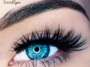 EyeLashes Supplier Online